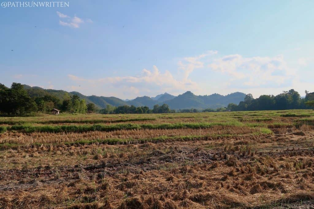 The flatlands of Thung Saliam with the northern highlands in the distance.