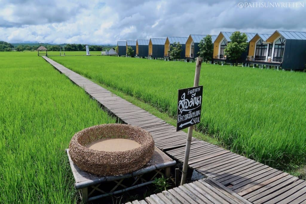 The Fang Modern Hotel in the rice fields south of the town.