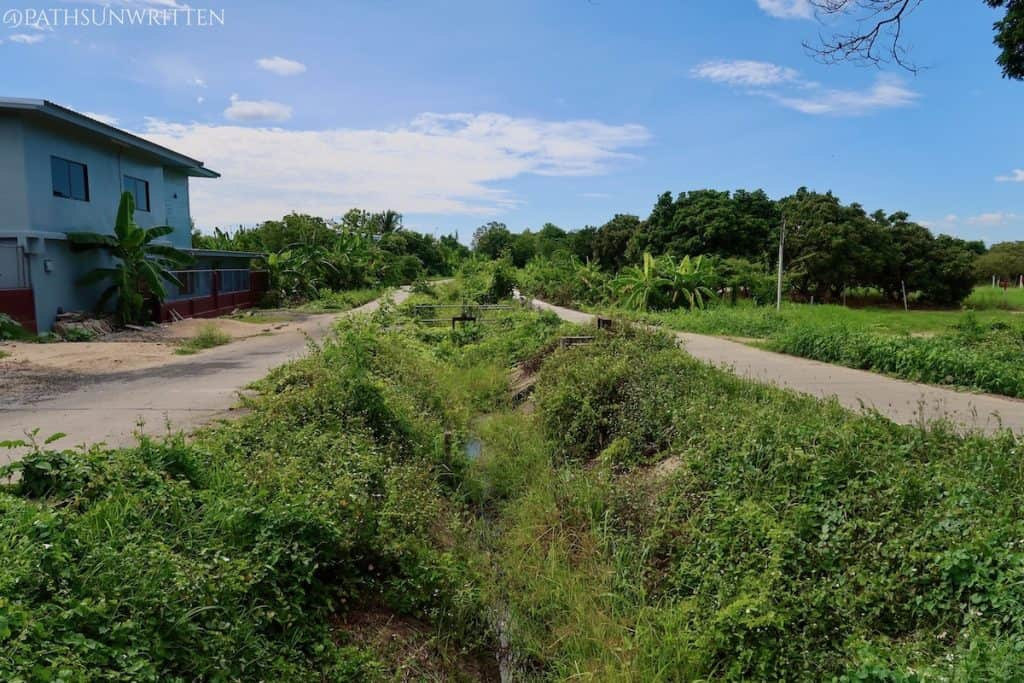 Most of Wiang Mano's moat is now basic irrigation ditches