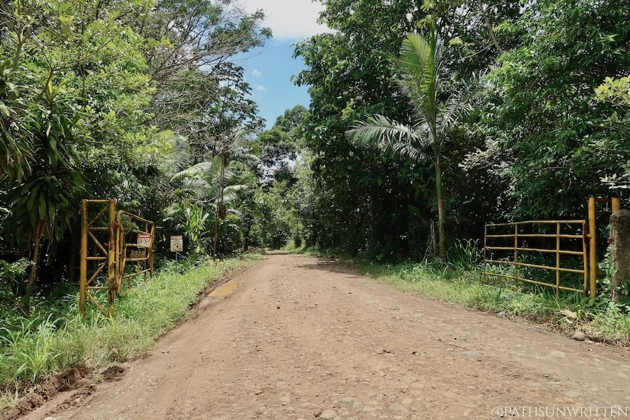 The gates leading into one of the private fruit plantations was also leads in the direction of the main ceremonial center of the Cutris Archaeological Monument